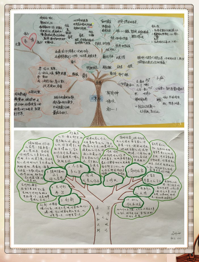 """用形象直观的""""知识树""""来梳理知识结构是一种很有效的学习方法."""